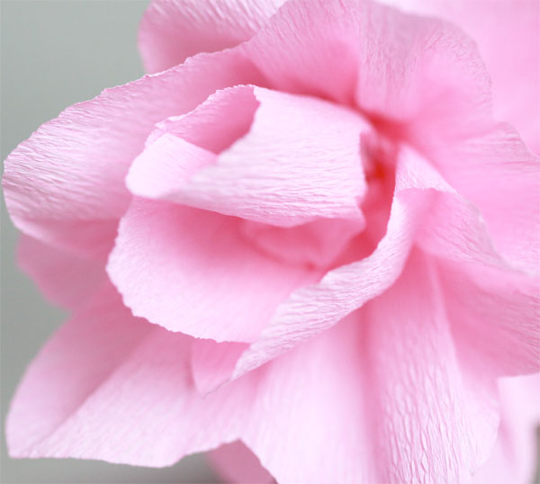 Papierblumen aus Krepp | we love handmade