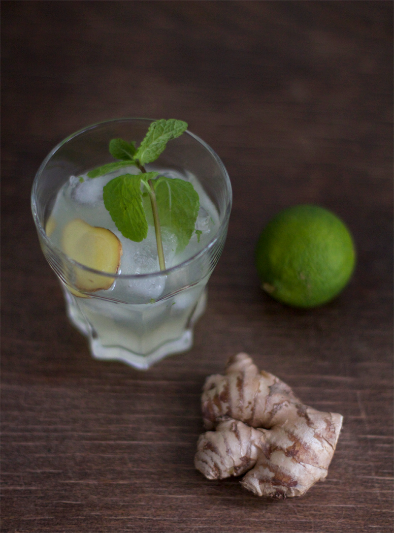 Gin Gin Mule Cocktail Rezept
