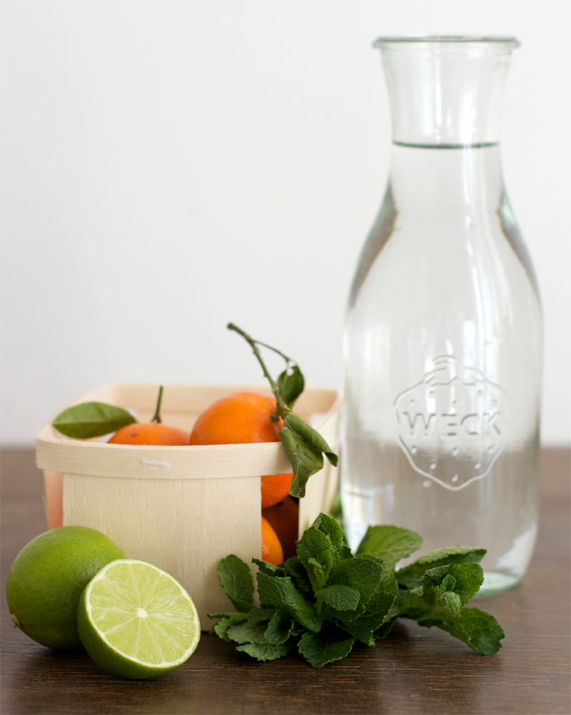 Infused Water Mandarinen Limette Minze