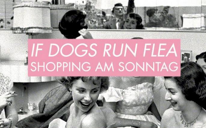 if dogs run flea