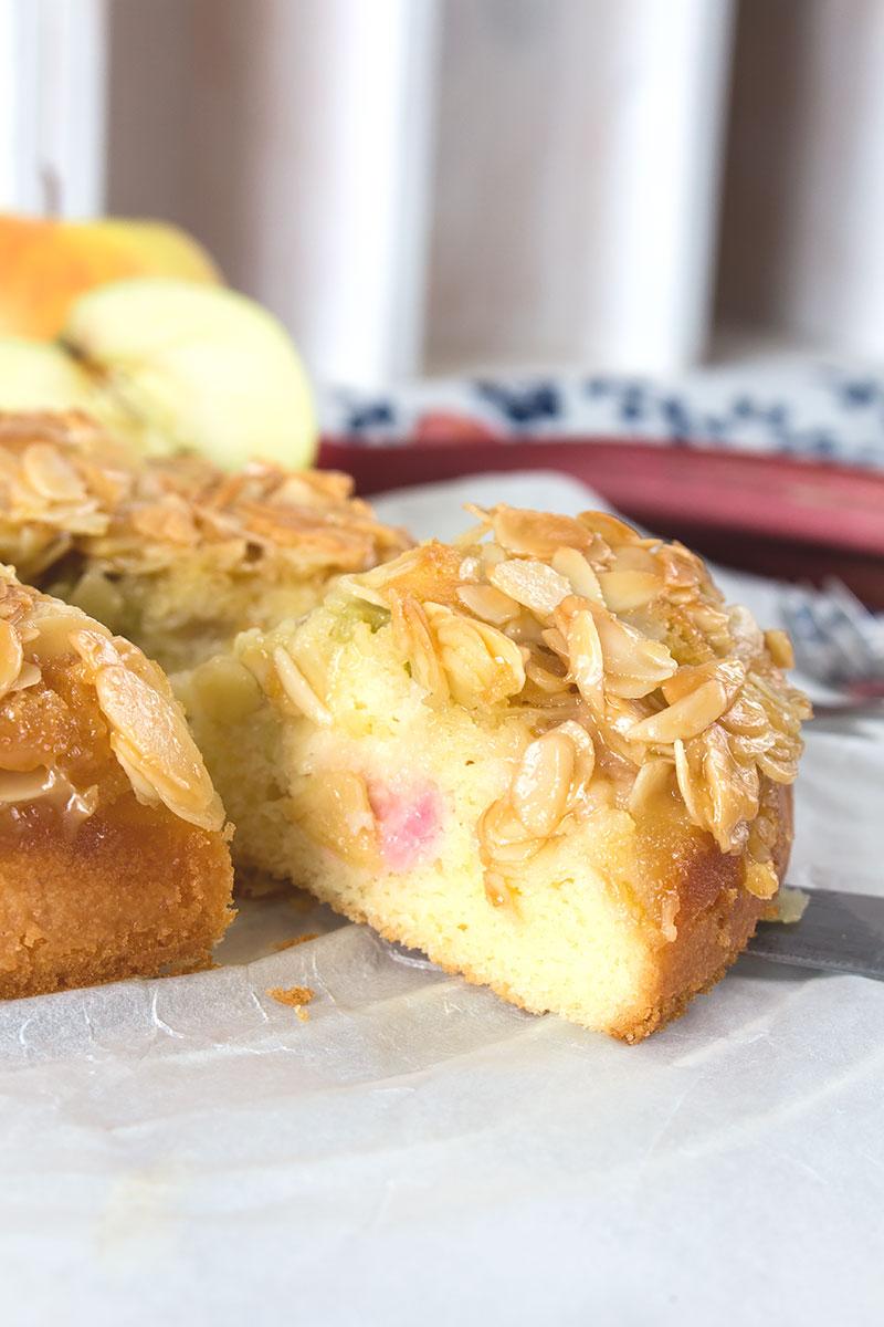 rhabarber-apfel-kuchen-6