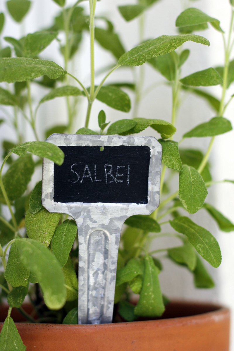 Garten DIY: Pflanzenbeschriftung | we love handmade