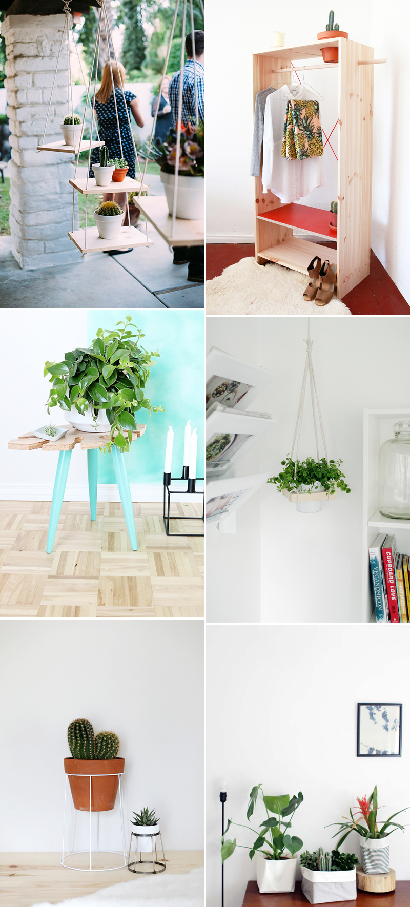 Inspiration Plant Display