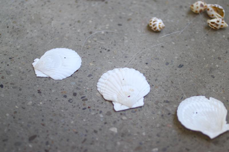 anknoten | muschel | we love handmade