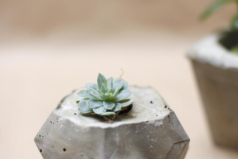 Concrete-Workshop Teaser | we love handmade
