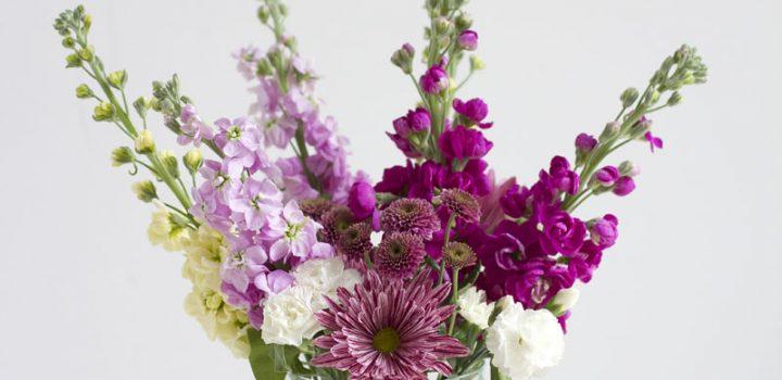 DIY: Blumen arrangieren