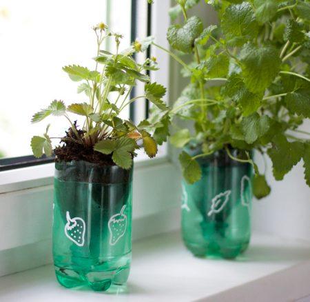 Upcycling-DIY: Kräutertöpfe mit Bewässerungssystem