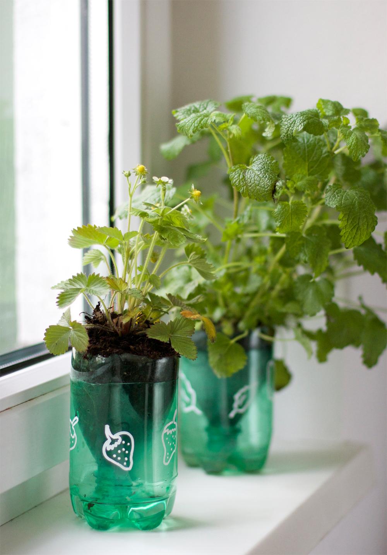 Upcycling DIY: Kräutertopf aus Plastikflaschen |we love handmade
