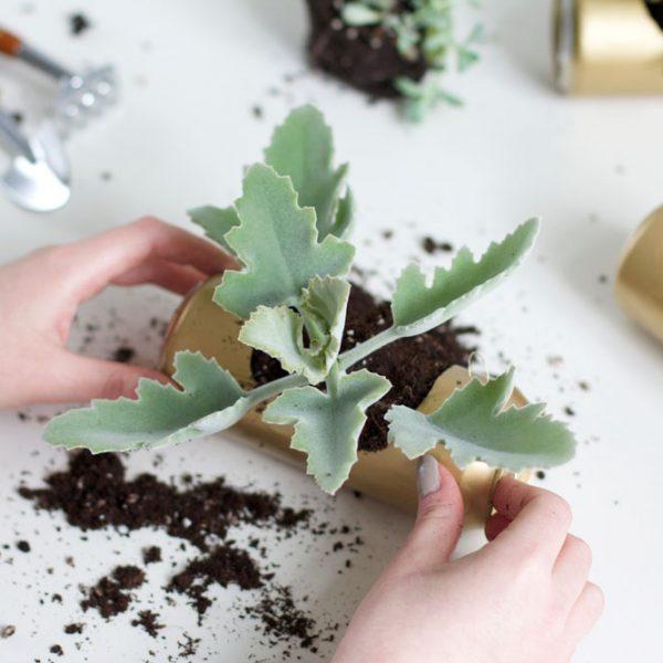 Blumenampel aus Dosen |we love handmade