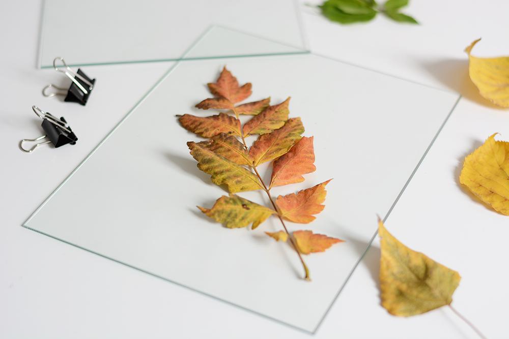 Glas-Bilderrahmen mit Blätter | we love handmade