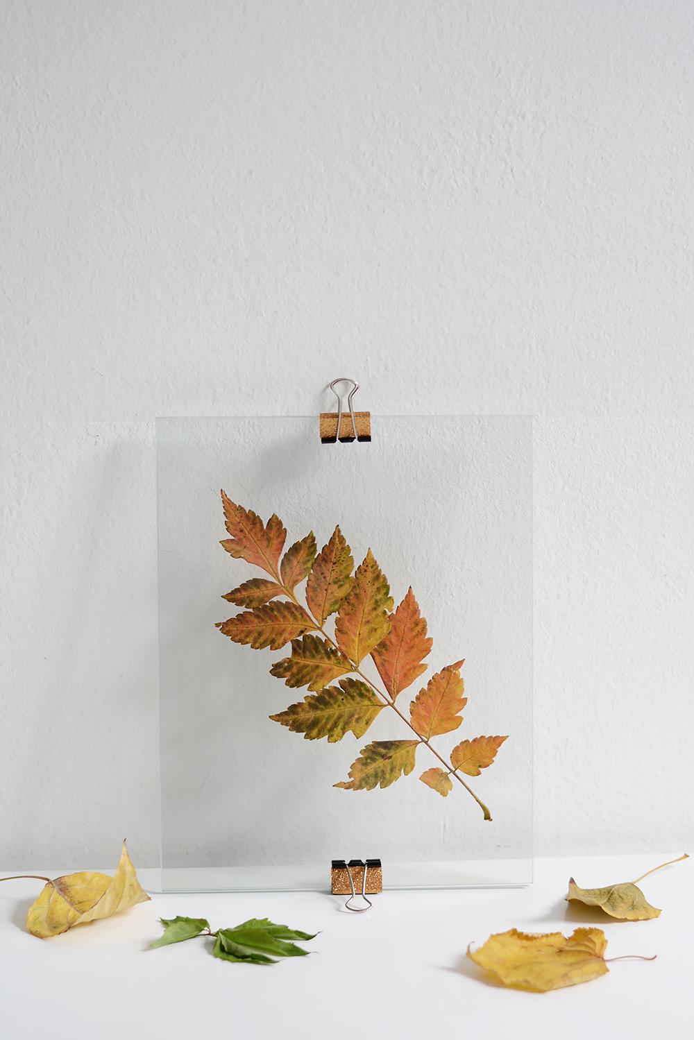 Glas-Bilderrahmen mit Herbstblättern | we love handmade