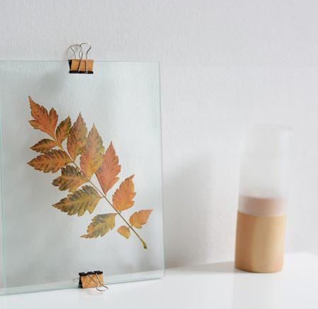 DIY: Herbstblätter im Glas-Bilderrahmen