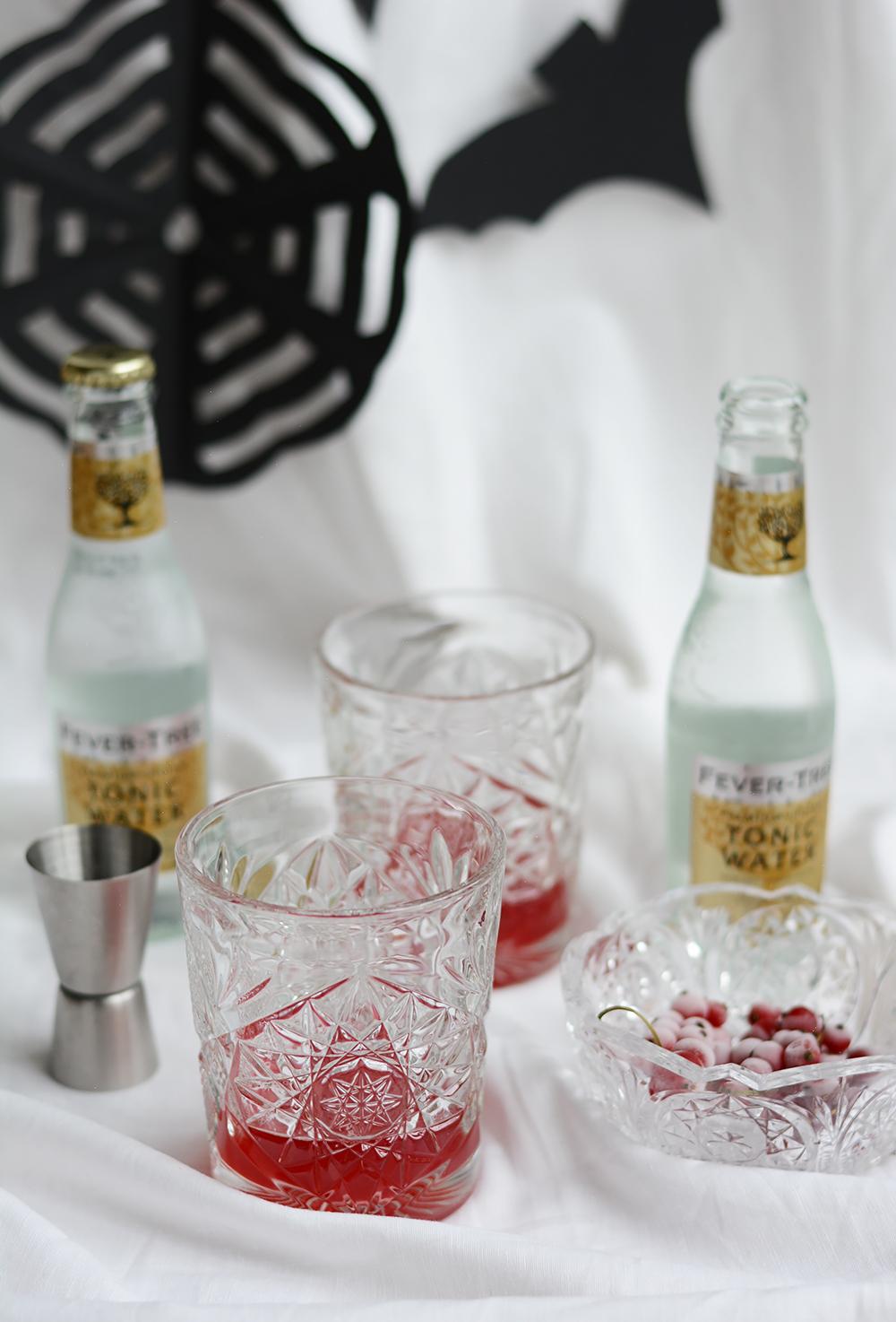 Ribisel-Gin-Tonic Zutaten | we love handmade