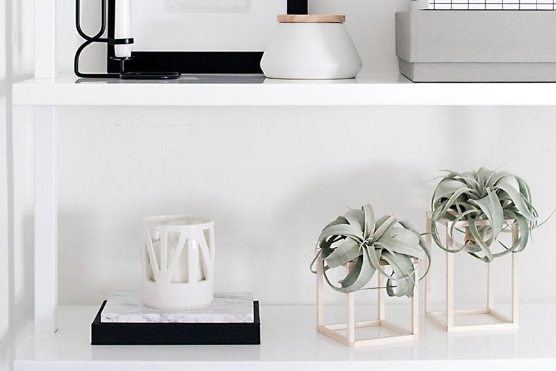 DIY-Air-Plant-Holders von homeyohmy.com