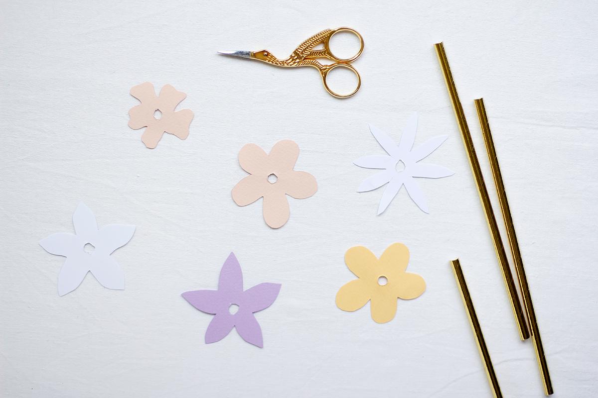 Strohhalmblüten |we love handmade
