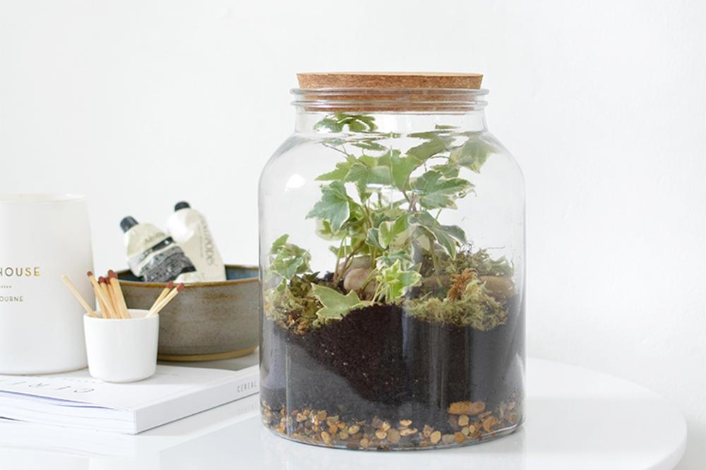 Anleitungen für ein Terrarium   we love handmade