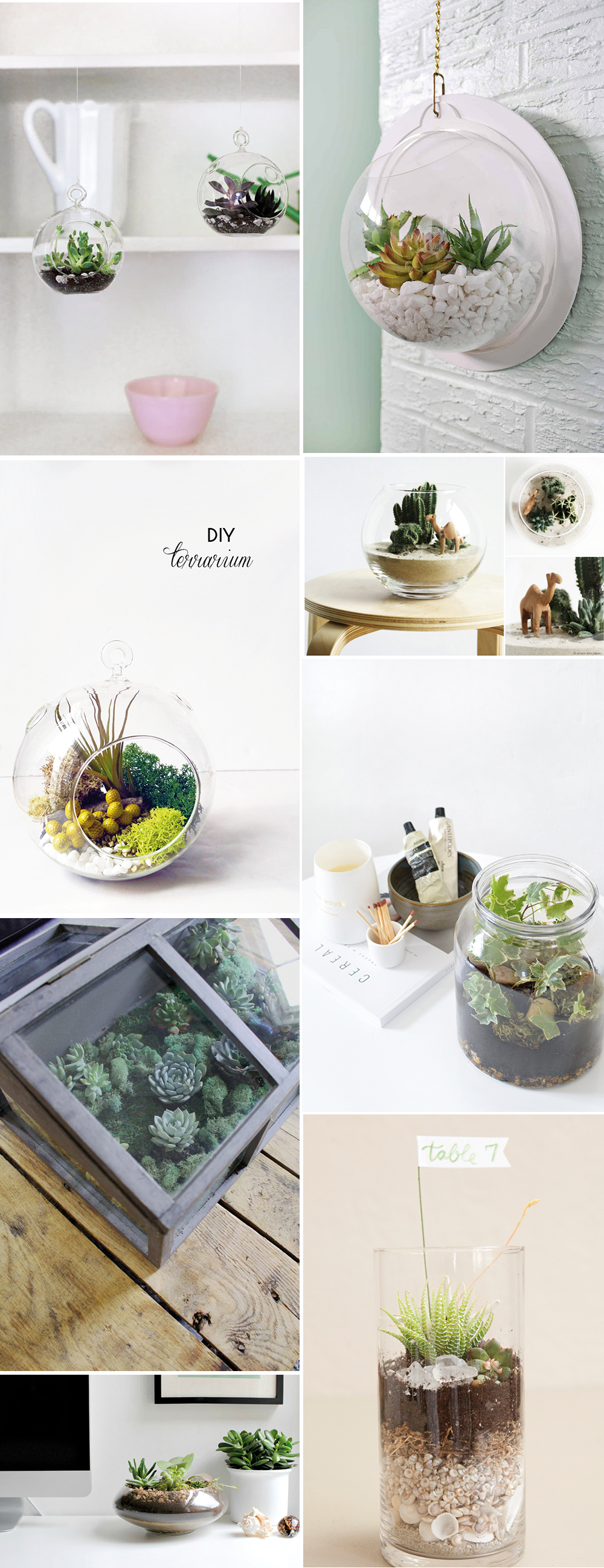 we love Inspiration: Terrarium selber gestalten | we love handmade