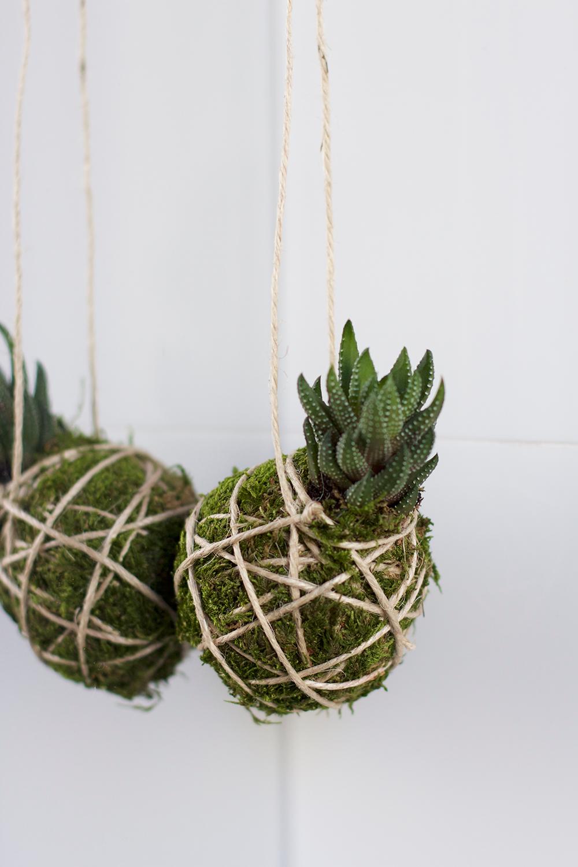 DIY: Kokedama | we love handmade