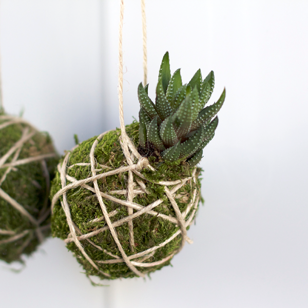 DIY: Kokedama | we love handmade
