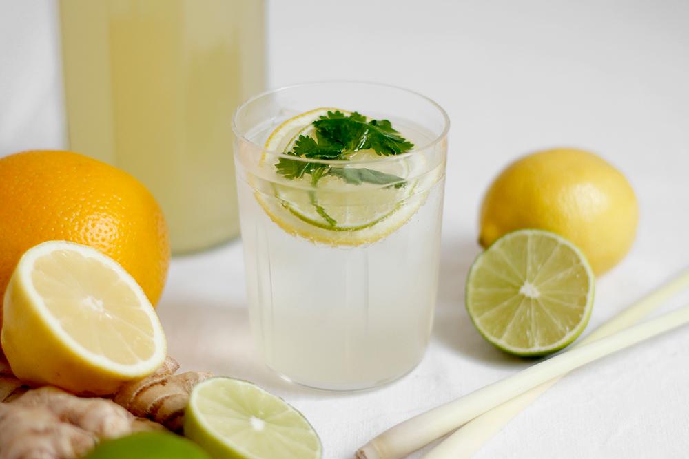 Drink: Rezept Koriander-Zitronengras-Limonade zum Selbermachen   we love handmade