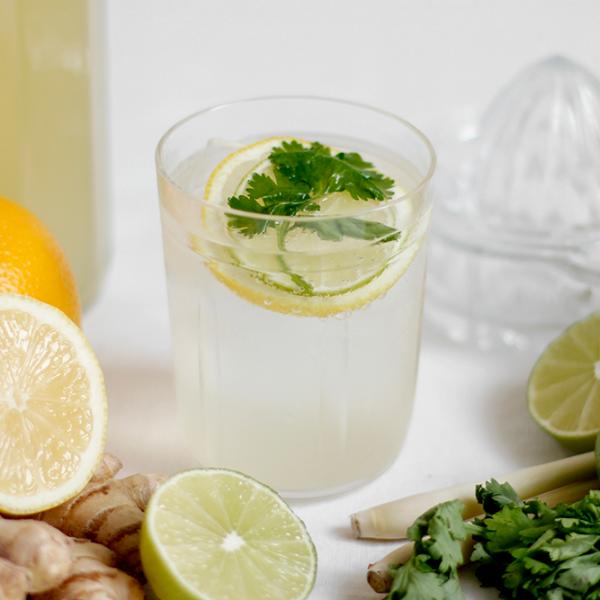 Drink: Koriander-Zitronengras-Limonade selber machen | we love handmade