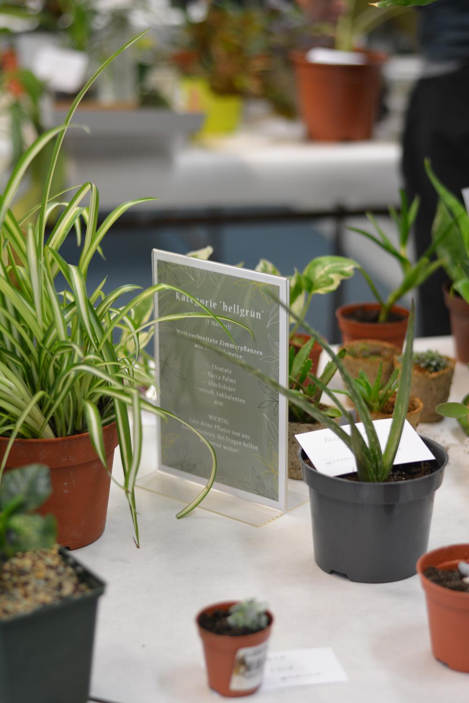 Pflanzentauschbörse Wien PlantFest