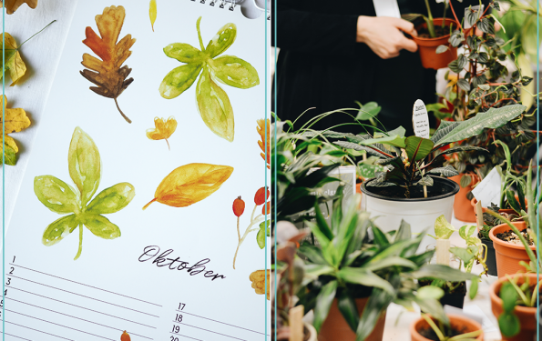 Monatsrückblick Oktober | we love handmade