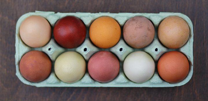 we love handmade GUIDE: Ostereier natürlich färben – so geht's!