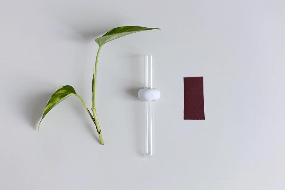 DIY: Magnetische Anzuchtstation mit Reagenzglas Acrylfarbe bemalen und Schleifpapier abschleifen | we love handmade