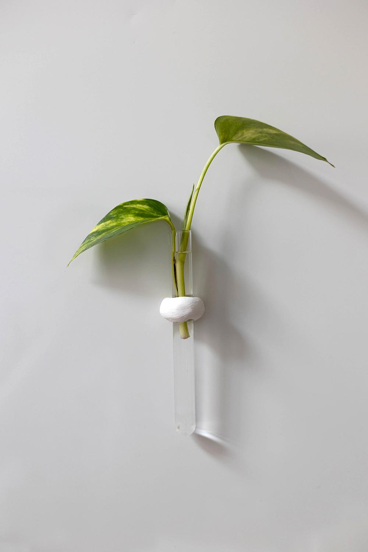 DIY: Magnetische Anzuchtstation mit Reagenzglas als Propagation Station | we love handmade