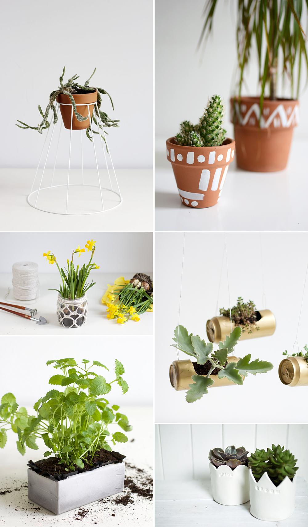 Inspiration: DIYs für Pflanzen | we love handmade