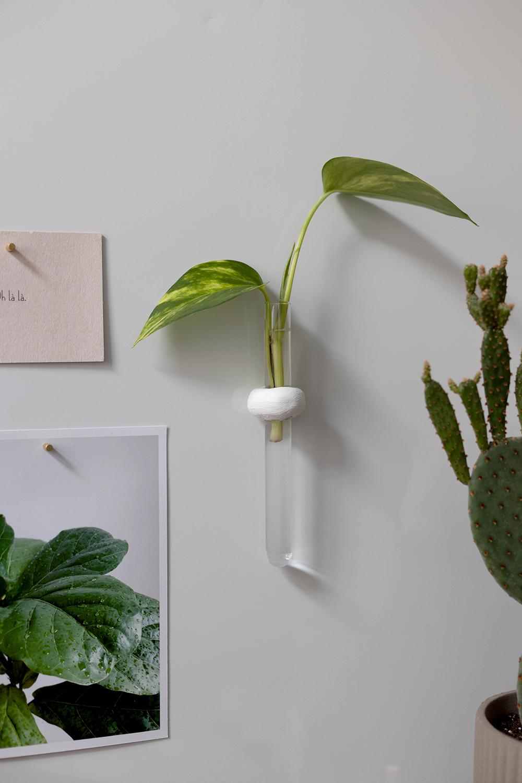 DIY: Magnetische Anzuchtstation mit Reagenzglas aus Keramiplast selber machen | we love handmade