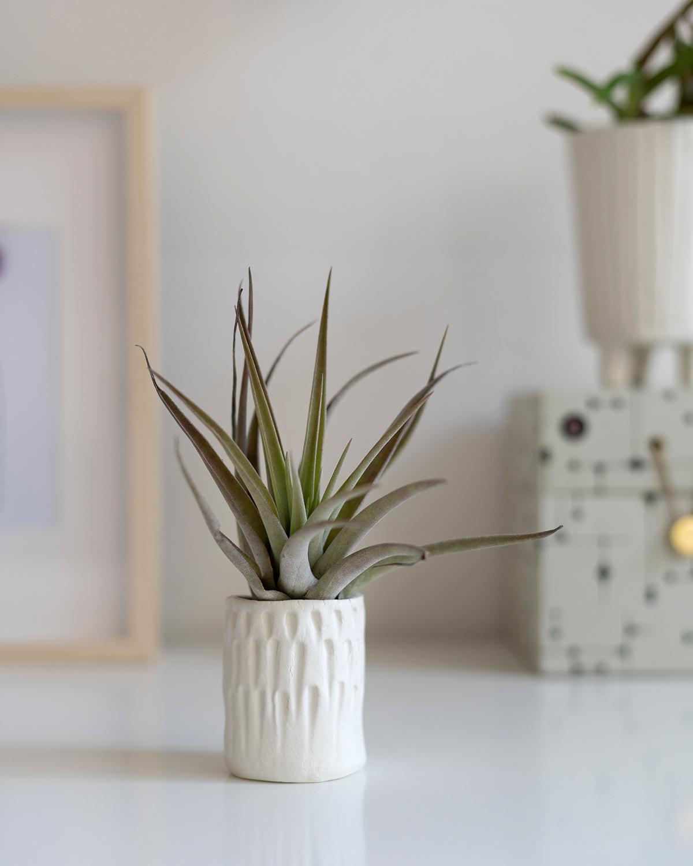Blumentopf aus Clay modellieren | we love handmade
