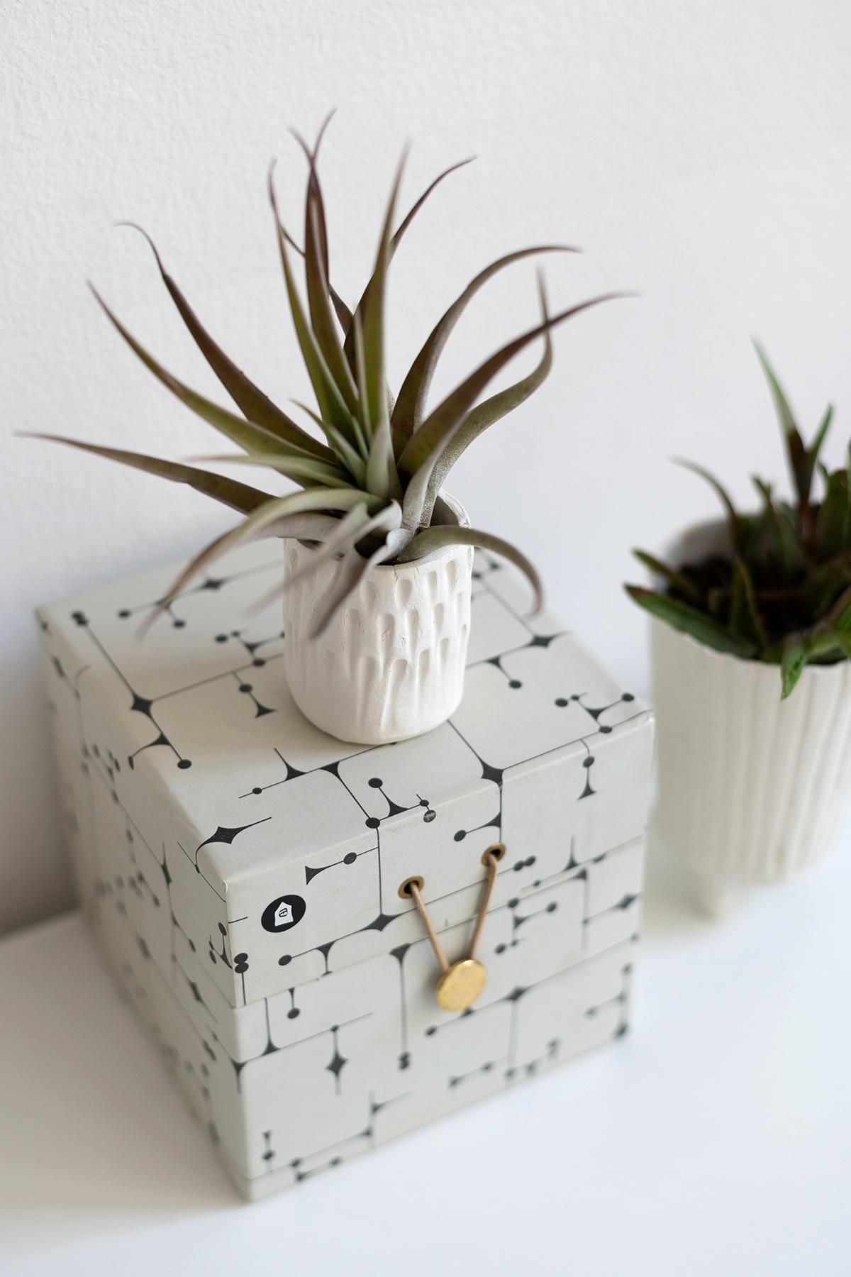 Ton-Töpfe: DIY | we love handmade