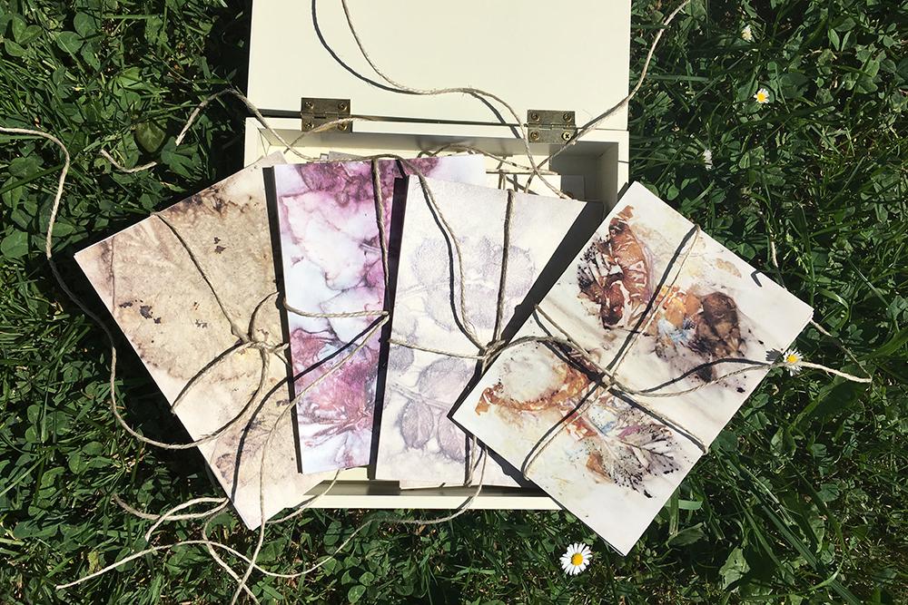 Ecoprint mit Doris Reinbacher: Postkartenset